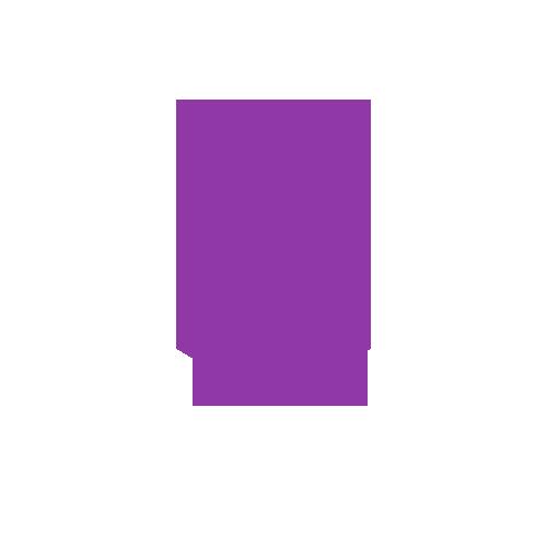 next2-icon